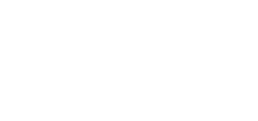 100+ Countries Supported Daily by Retail Pro